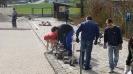 Renovierung Parkplatz_49